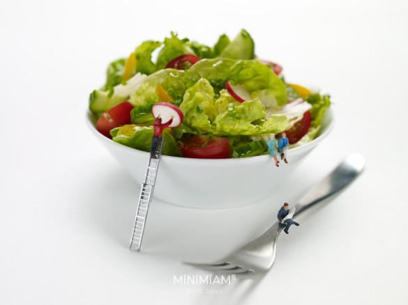 ibis salade 2012